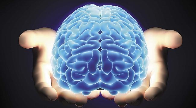 Beyniniz Nasıl Çalışır? Efsaneler ve Gerçekler...
