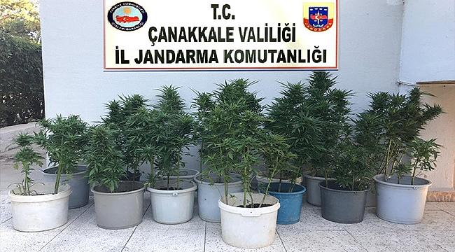 JANDARMA VE POLİSTEN ORTAK UYUŞTURUCU OPERASYONU