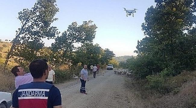 KAYBOLAN 56 KOYUNU JANDARMA DRONE İLE BULDU